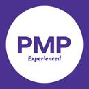 Project Management Professional (PMP)®